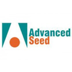 Advanced Seed Lawn Seed