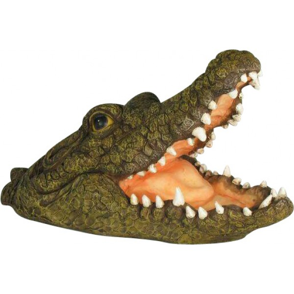 Floating Snapping Crocodile Head (46cm)